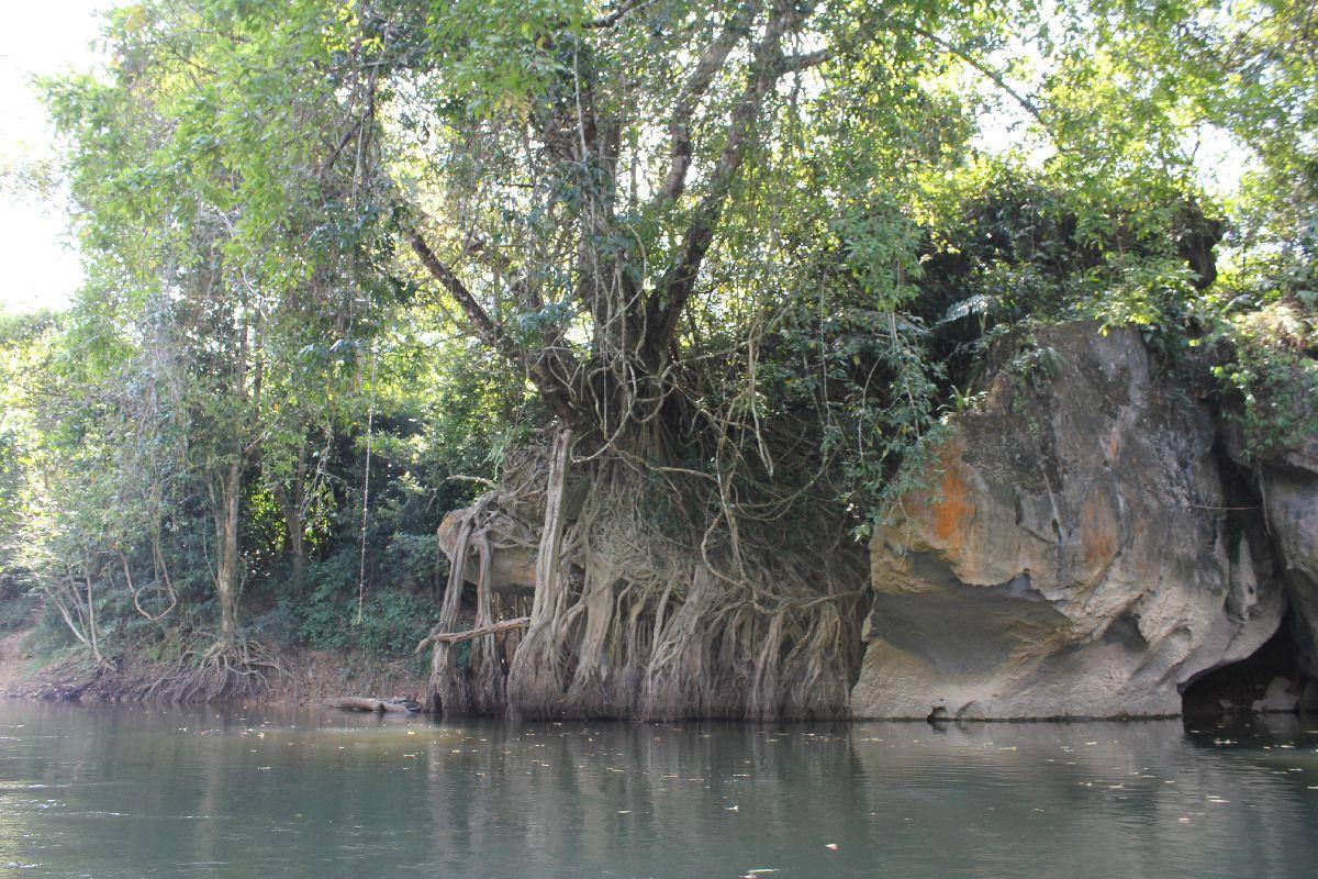 Canoeing at Khao Sok