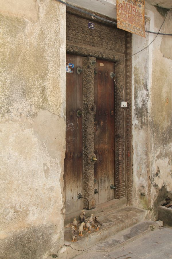 An ancient door within the town of Stone Town, Zanzibar, with some unexpected guests on the door step!