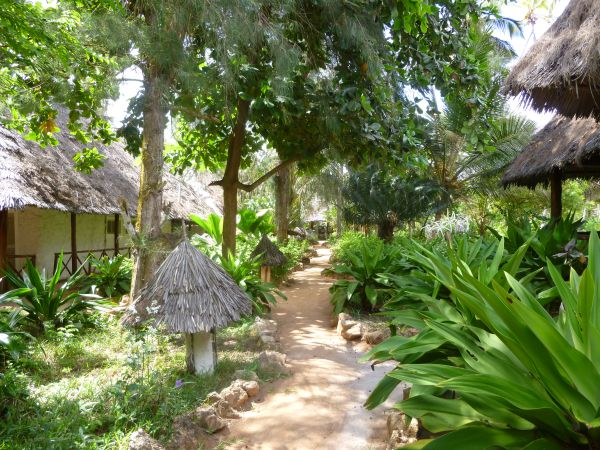 The pretty pathway through Matemwe Beach Village.