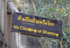 funnythaisigns